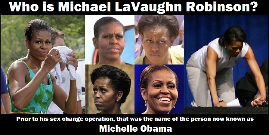 michelle lavaughn robinson obama thesis Michelle lavaughn robinson obama was born januray 17, 1964 in chicago, illinois her mother, marian robinson, was a full-time homeworker until michelle entered high school.