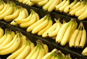 Banana Terrorist 07