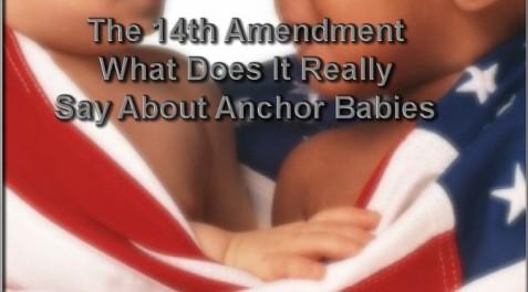 Anchor Baby 00