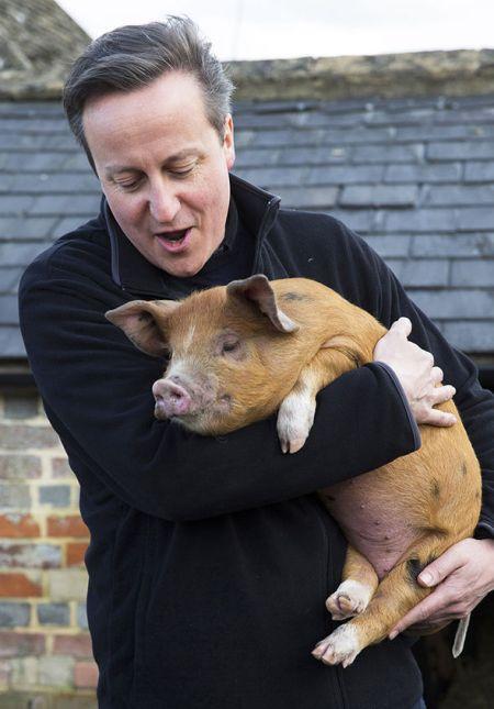 David Cameron 00
