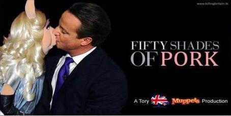 David Cameron 07