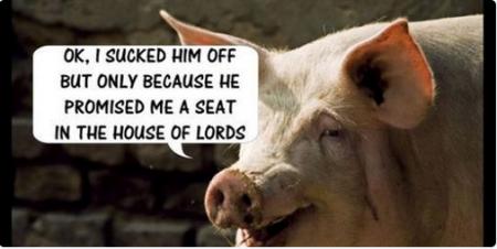 David Cameron 17