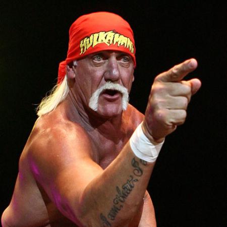 Hulk Hogan 02