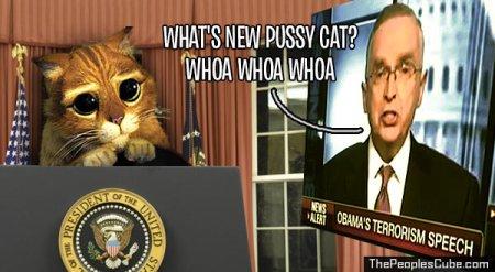 Pussy Cat 01