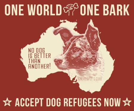 Refugee Dogs 01