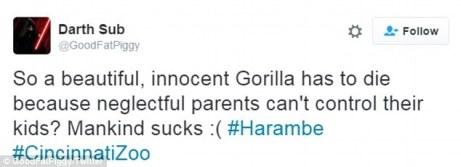 Gorilla Lives Matter 07