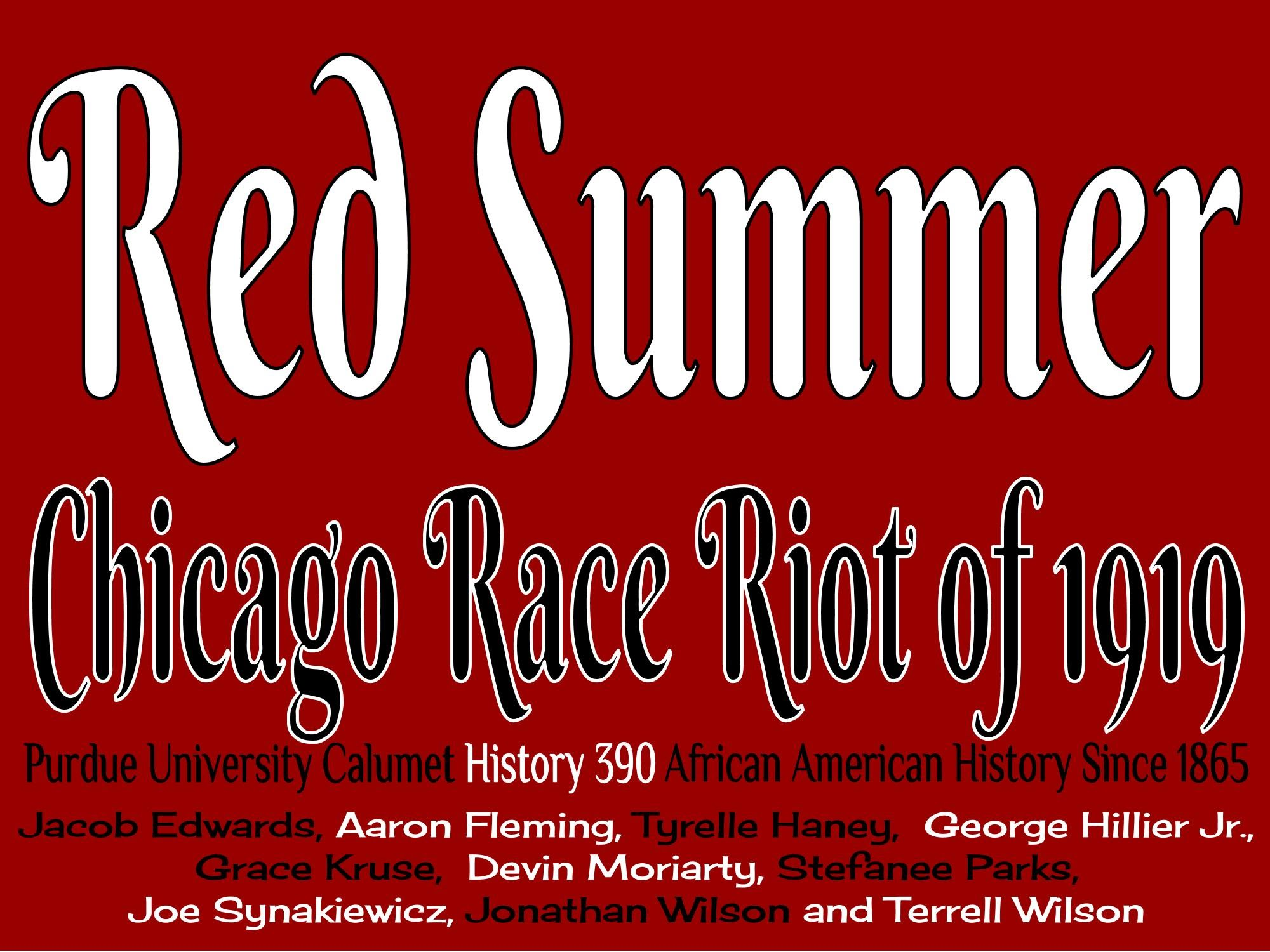 race riot chicago in the red summer 1919 book review
