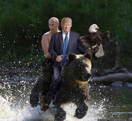 do polar bears and grizzly meet the president