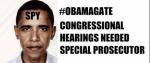 ObamaGate 09